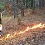 4 Ways to Light a Prescribed Fire