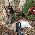 Ticked Off: No More Venison