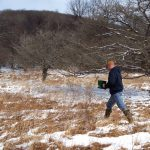 How to Frost-Seed Food Plots