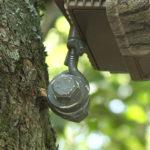 Build a DIY Trail-Camera Mount
