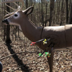 Why 3D Archery Will Make You a Better Bowhunter