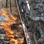 Try Bow-Range Burning for Archery Attraction