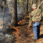 Fire Up Your Deer Hunting With a Prescribed Burn