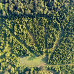 Strategic Food Plot Designs: Try the Wagon Wheel