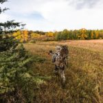 NDA Joins Strong Group Highlighting the Importance of Hunting to Wildlife Refuges
