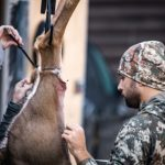 NDA Strongly Opposes Anti-Hunting Petition Submitted by Animal Rights Groups