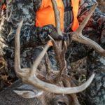 Action Alert: New York Deer Hunting Regulation Proposals