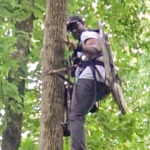 Practice Your Treestand Safety Technique Before the Hunt