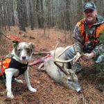 Recover Your Deer With a Deer-Tracking Dog